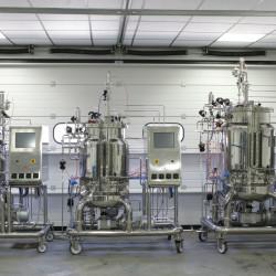 Pilot fermenters